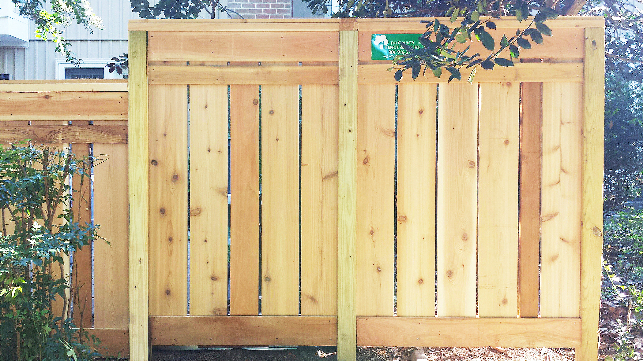 Board on Board Wood Privacy Fence